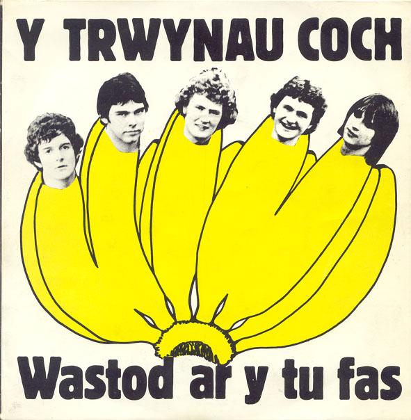 Trwynau Coch - Wastod