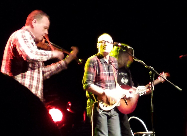 Bad Shepherds1