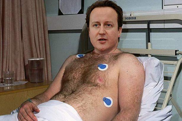 David Cameron Hospital Bed-677917