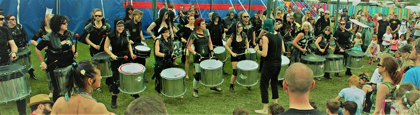 Bearded drums 17